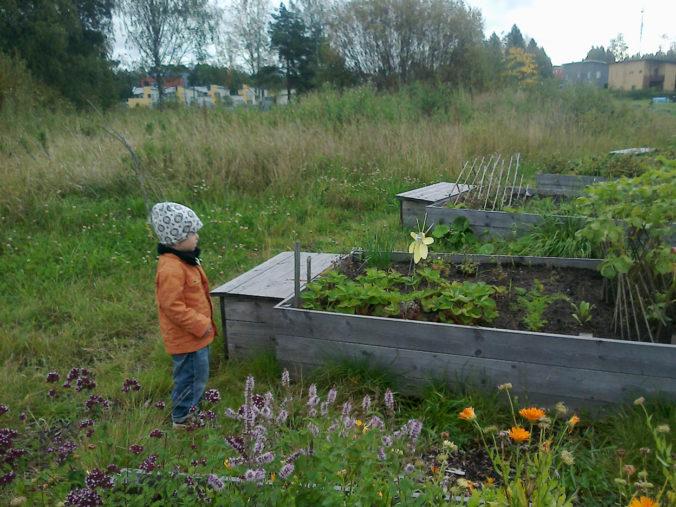 viljelylavat on oppimisympärisö